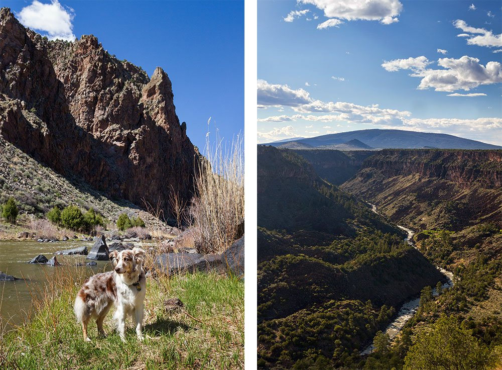 a photo of a dog standing at the bottom of the Rio Grande gorge and a photo of the view from the top