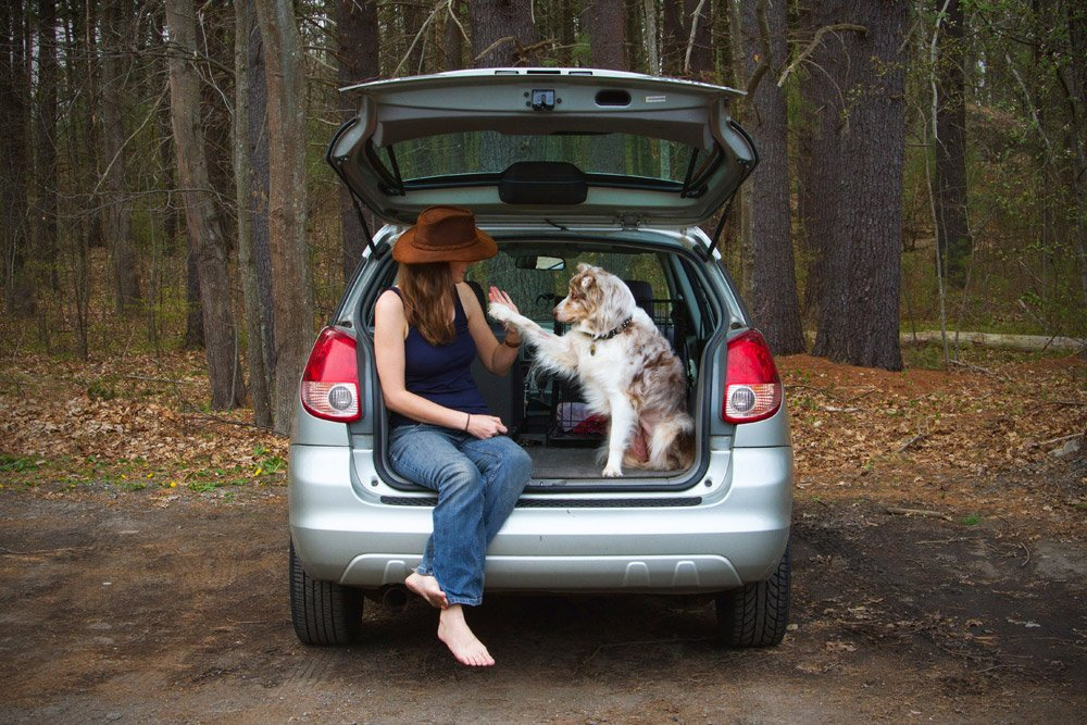 girl and dog sitting in the back of a car