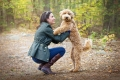 woman kneeling down with her Goldendoodle in the woods