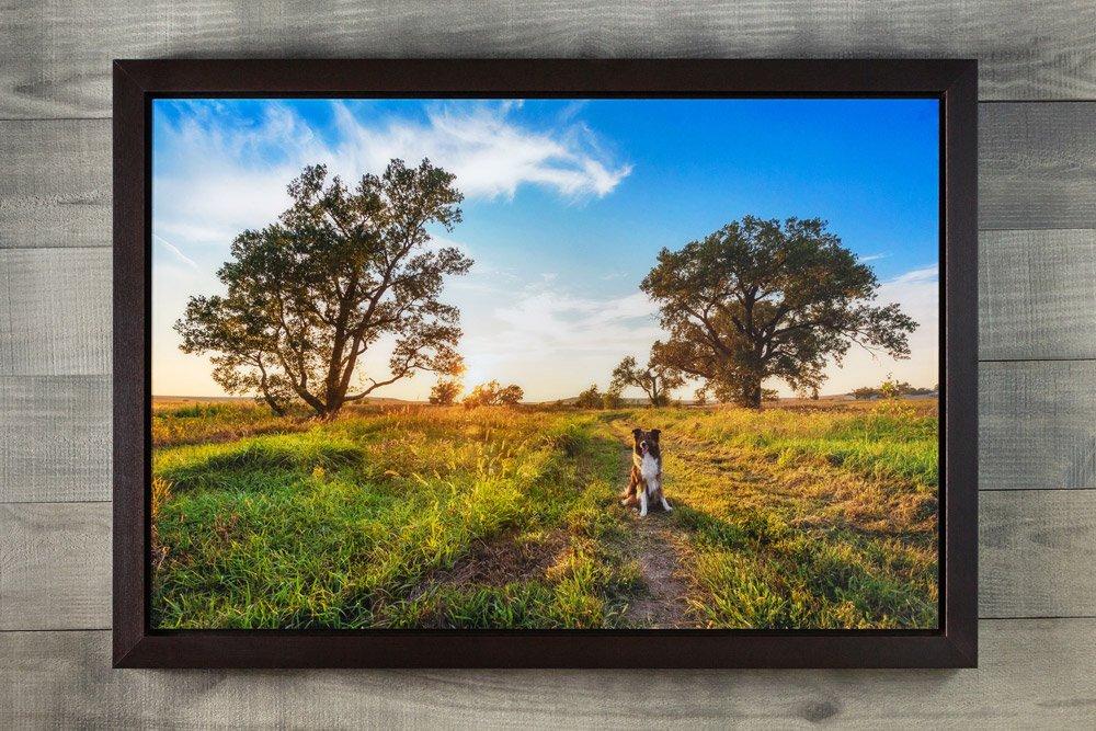 Framed Acrylic