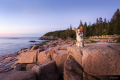 Corgi sitting on a cliff at Acadia National Park