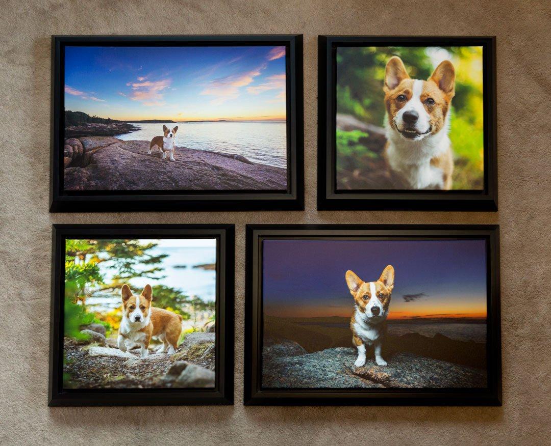 Printed artwork photographs