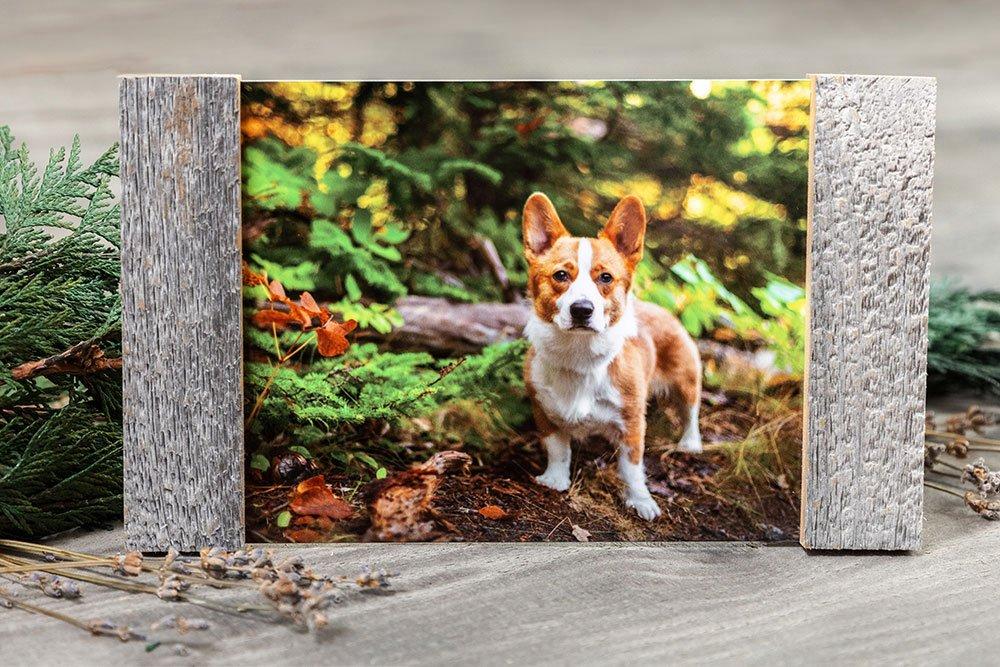 Metal print with barnwood frame